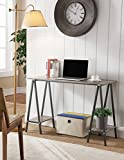 Kings Brand Furniture Home & Office Desk/Table with Side Shelves, Gray