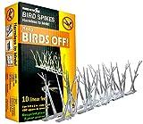 BirdX Plastic