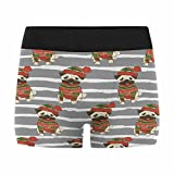 InterestPrint Mens Boxer Briefs Underwear Christmas Pattern with A Funny Pug in Sweater and Winter Hat XXXL