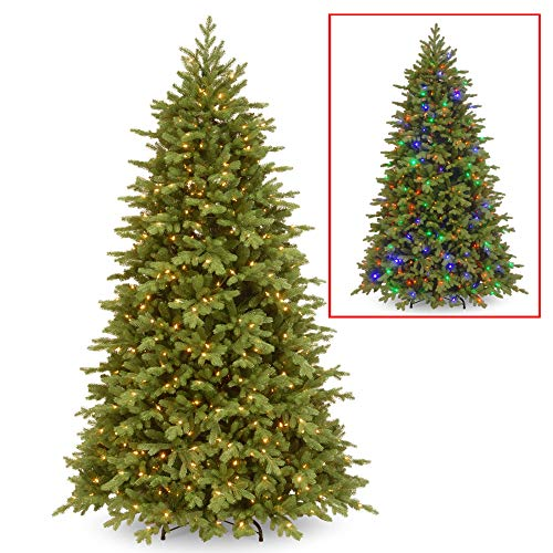 7.5' Pre-Lit Princeton Fraser Fir Artificial Christmas Tree - Dual Color LED Lights (Christmas Tree With Dual Lights White And Multicolored)