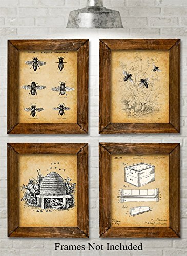Bee Keeper Patent Prints - Set of Four