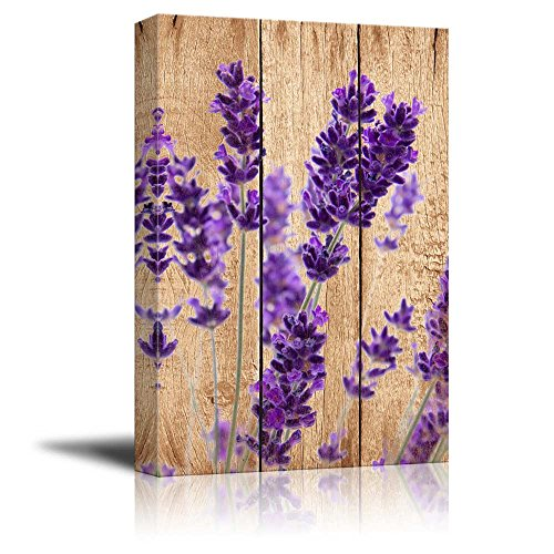 Photograph of Purple Perennial Flowers Over Wood Panels Nature