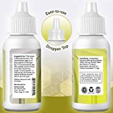 Dexterity Health Liquid MSM Eye Drops 2-Pack of 2