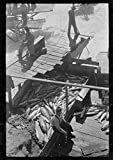 1941 Photo Indian fishing for salmon, Celilo Falls, Oregon. The Indians sell to commercial canneries Location: Celilo Falls, Oregon