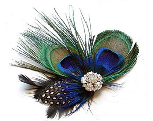 Leiothrix Peacock Feather Hair Clip Costume Hair Accessory for Women and Girls]()