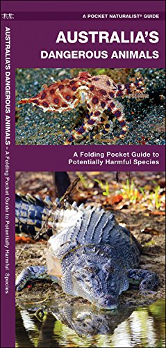 Australia's Dangerous Animals: A Folding Pocket Guide to Potentially Harmful Species (A Pocket Naturalist (Poisonous Spiders)