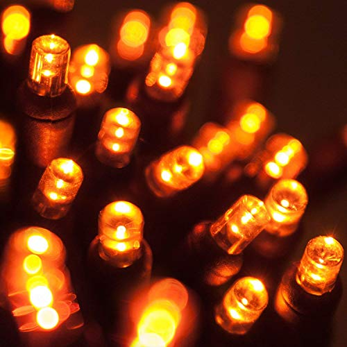 Wintergreen Lighting LED Amber/Orange Halloween Mini Light Set, 70 5mm Lights, Indoor/Outdoor Halloween Light…