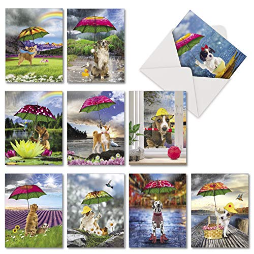Raining Dogs: 10 Assorted Blank All Occasions Note Cards Showing Lovable Pups Enjoying the Wet Weather, with Envelopes. ()