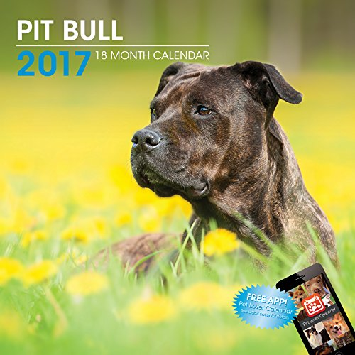 LittleGifts Pitbull 2017 Calendar (3040)