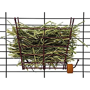 Kaytee Hay Manger with Salt Hanger, Colors Vary