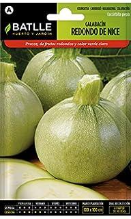Semillas Hortícolas - Calabacín redondo de Niza - Batlle