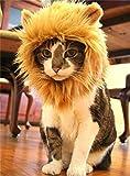 HTKJ Lion Mane Dog Cat Costume Cute Pet Wig Hat for Cat or Small Dog Dress up Halloween Christmas (Brown)