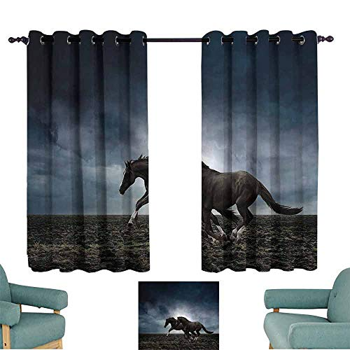 (DILITECK Printed Curtain Horses Animal Couple Horses Running on The Plowed Field in Stormy Dark Weather Sky Equestrian Concept Thermal Insulated Tie Up Curtain W63 xL72 Fabric)