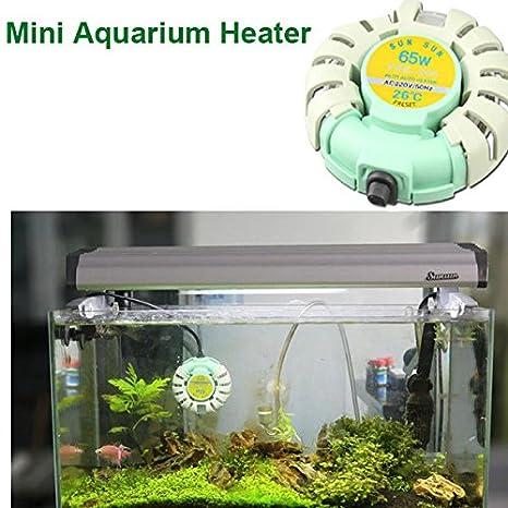 Rosa Lagarto SunSun Mini acuario peces tanque calentador automático Antideflagrante calentadores para Betta: Amazon.es: Hogar