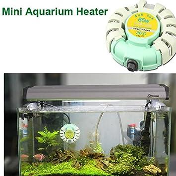 Bargain World Calentador automático de tanque de peces de mini acuario Sunsun calentadores anti- explosión para betta: Amazon.es: Hogar