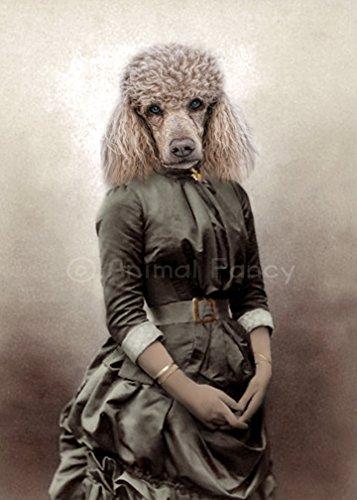 Poodle Dog Art Print -