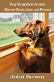 Dog Separation Anxiety: How to Detect, Cure and Prevent