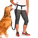 Hands Free Dog Leash: Great for Hiking, Running, Exercising and all Outdoor Activities (Black)