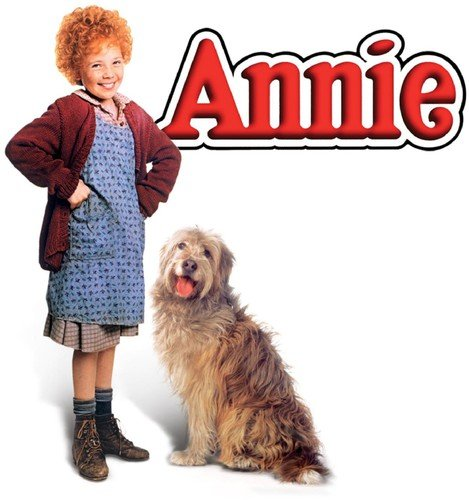How to find the best annie movie blue ray for 2019?