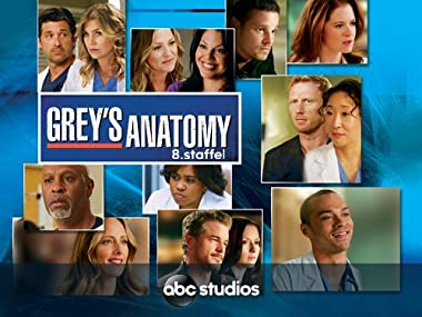 Amazonde Greys Anatomy Staffel 8 Dtov Ansehen