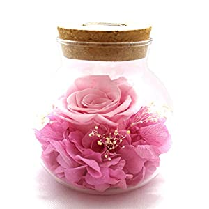 HAVEN Never Withered Roses with Lights Flower Preserved by 100% Real Flower Never Withered Rose Gift for Girl Valentine's Day Anniversary Birthday Wedding 33