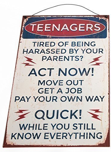 the-home-fusion-company-vintage-retro-rustic-metal-sign-plaque-slogan-teenager-act-now-humour-fun