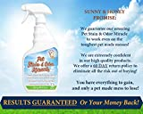 Pet Stain & Odor Miracle - The Best Enzyme Cleaner