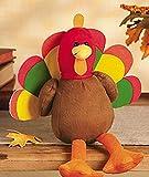 Plush Turkey