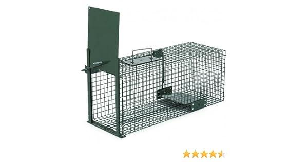 Trampa animales vivos - Martas Conejos Ratas - 60x23x23cm Trampa ...