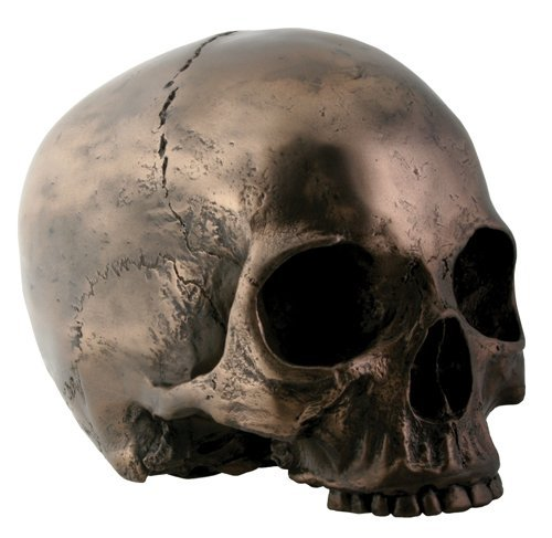7 Inch Collectible Cold Cast Bronze Colored Resin Bronze Skull Head