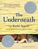 The Underneath (Thorndike Literacy Bridge Young Adult)