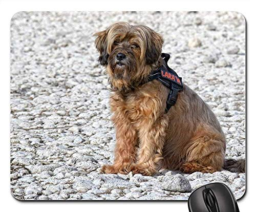 Gaming Mouse Pads,Mouse mat,Dog Tibetan Terrier Sitting Profile Portrait Pet