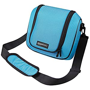 AmazonBasics Travel Bag for Nintendo 2DS XL - Turquoise
