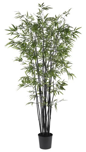 Nearly Natural 5277 Black Bamboo Silk Tree, 6.5-Feet, Green