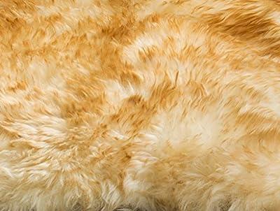 Safavieh Genuine Sheepskin Pelt White Premium Shag Rug SHS121A
