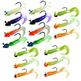 QualyQualy Jig Heads Bass Fishing Hooks Lures Kit Saltwater Freshwater 7g-8g Fishing Jigs with Curly Tail Maggot Lure Kit 17 Pcs