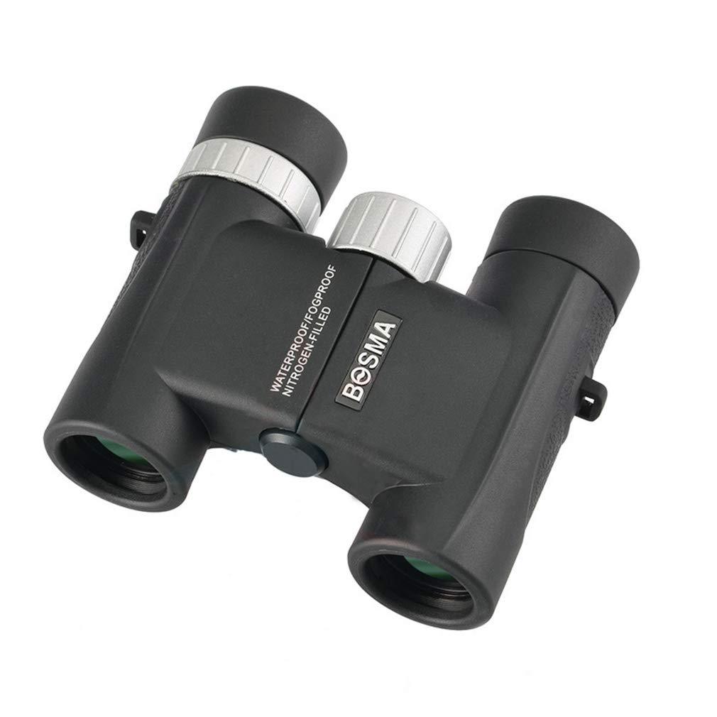 ALUK-Telescopes Portable léger HD Jumelles matériau en métal imperméable et Anti-buée approprié pour l'observation extérieure, Jeu de Famille, Voyage, Concert de Montre (Taille : 8x25)