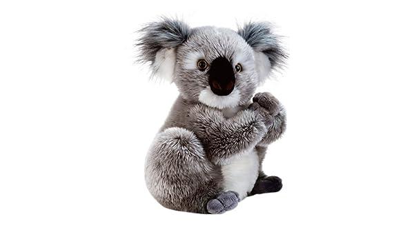 Amazon.com: Plush & company - Koline - Peluche de Koala - 22 cm: Toys & Games