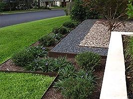 Core borde 100 mm cara – borde de jardín de acero flexible (5 unidades) incluye 5 metros lineales cuando se conecta. (varios colores): Amazon.es: Bricolaje y herramientas