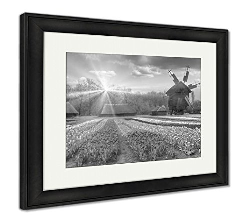 Fields of Tulips in Village, Wall Art Home Decoration, Black/White, 30x35 (Frame Size), Black Frame, AG5997697 ()