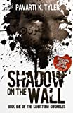 Shadow on the Wall: Superhero | Magical Realism Novels (The SandStorm Chronicles | Magical Realism Books Book 1)