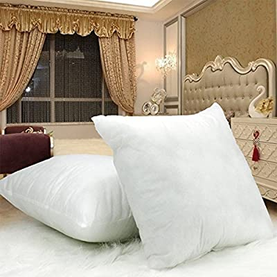 """DreamHome - 18"""" X 18"""" Square Poly Pillow Insert (1, White)"""