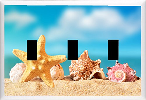 Seashell and starfish on the sandy beach near the sea. Summer beach. LIGHT SWITCH COVER PLATE OR OUTLET V803 (3x Toggle)