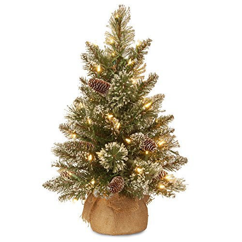 National Tree 2 Foot Glittery Bristle Pine Tree with for sale  Delivered anywhere in USA