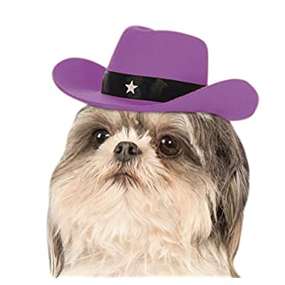 Rubie's Lavender Cowgirl Hat for Dogs, S/M: Toys & Games