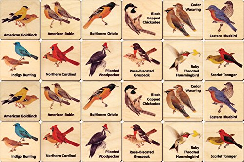 Peterson Backyard Bird Memory Tiles - Made in USA 24 tiles 2 each 12 images made in New England
