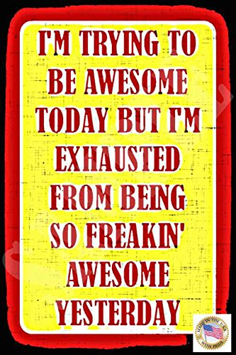 I'm Awesome Funny Sign MADE IN USA! 8