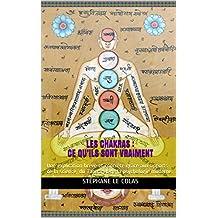 LES CHAKRAS : CE QU'ILS SONT VRAIMENT: Une explication brève et concrète grâce aux apports de la science, du Tantra et de la psychologie moderne. (French Edition)