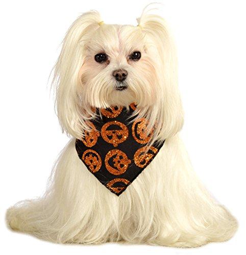 Rubie's Costume Company (Rubies Costume Company Glitter Pumpkin Pet Bandana, Medium/Large)