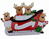 MAXORA Personalized Reindeer Family Sled of 4 Christmas Ornament